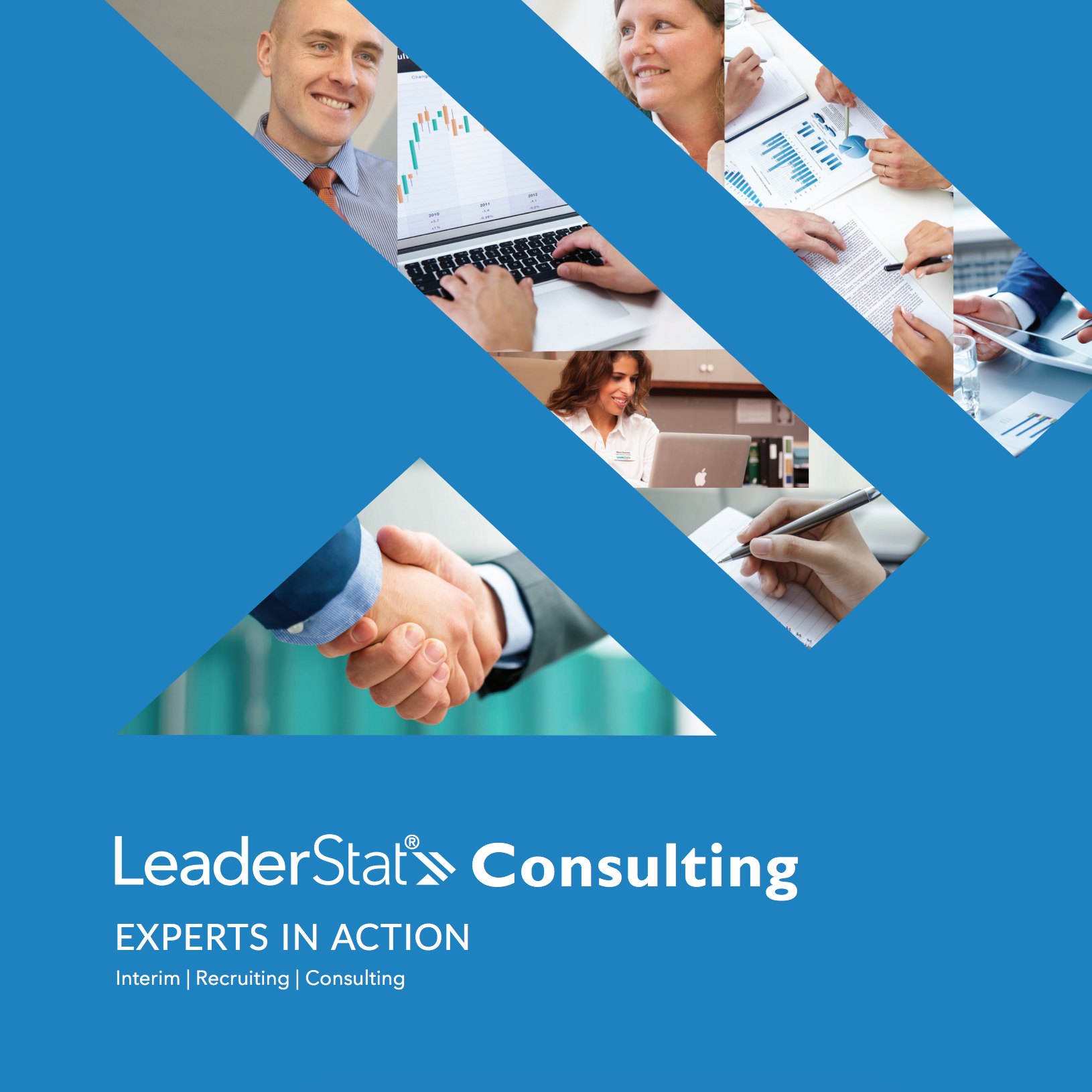 LeaderStat Consulting Brochure